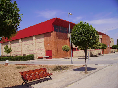 polideportivo villamayor