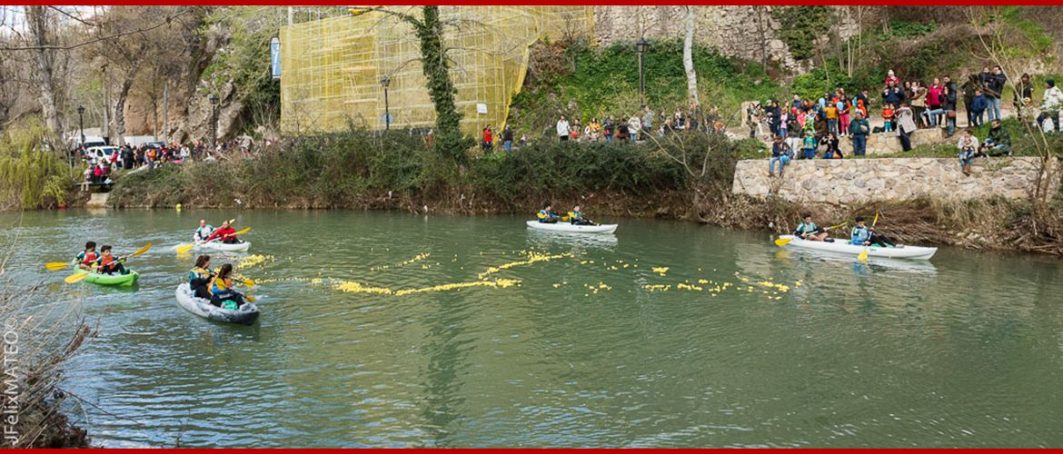 patitos solidarios cuenca